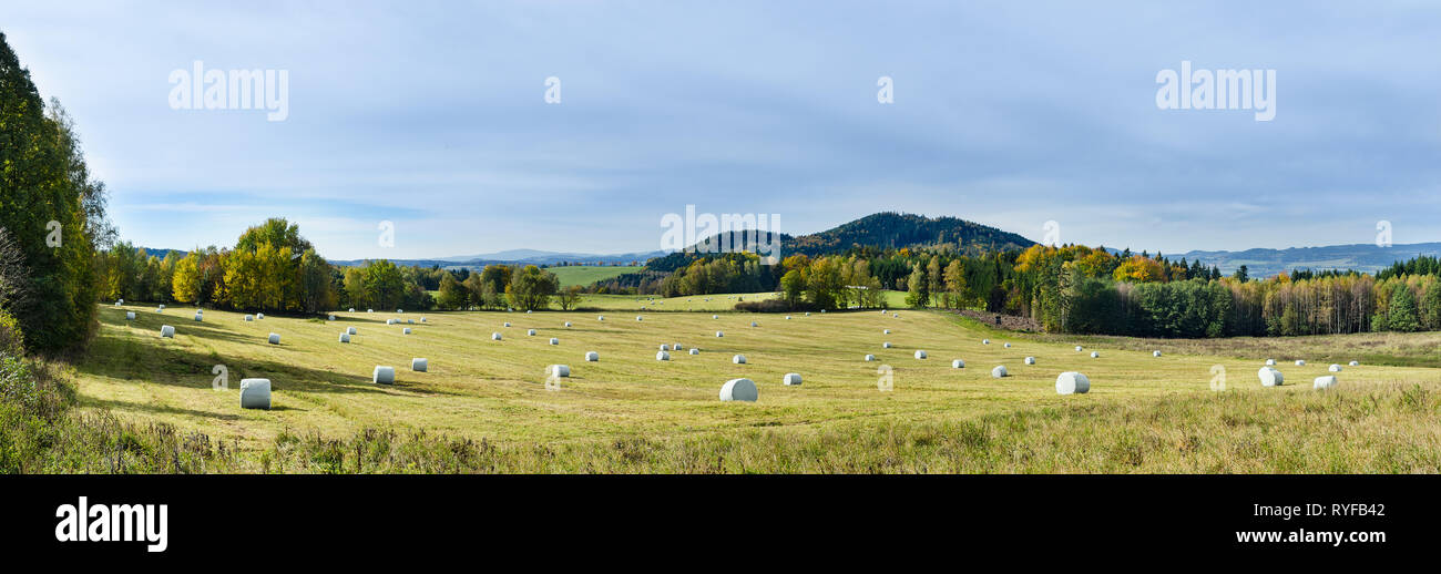 Natural autumn panorama. Green meadow, trees, mountains and blue sky. Grassland with hay packaged in round white plastic wraps. Panoramic landscape. - Stock Image