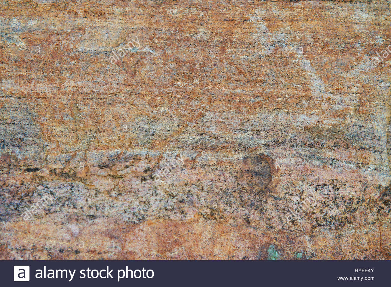 Closeup image of detail on rock wall in rich, earthy tones. - Stock Image