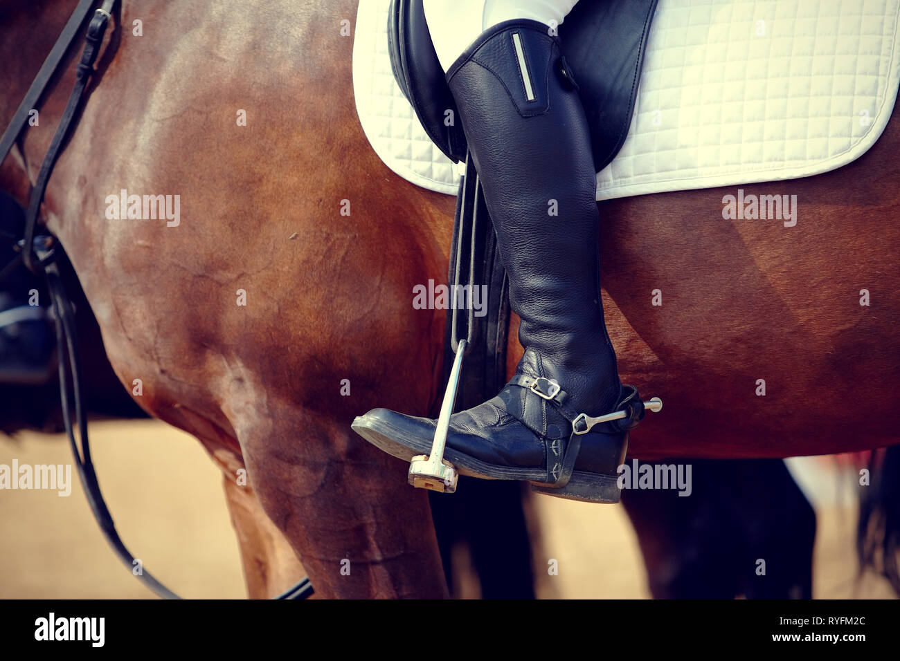 Foot of the athlete in a stirrup astride a horse Stock Photo