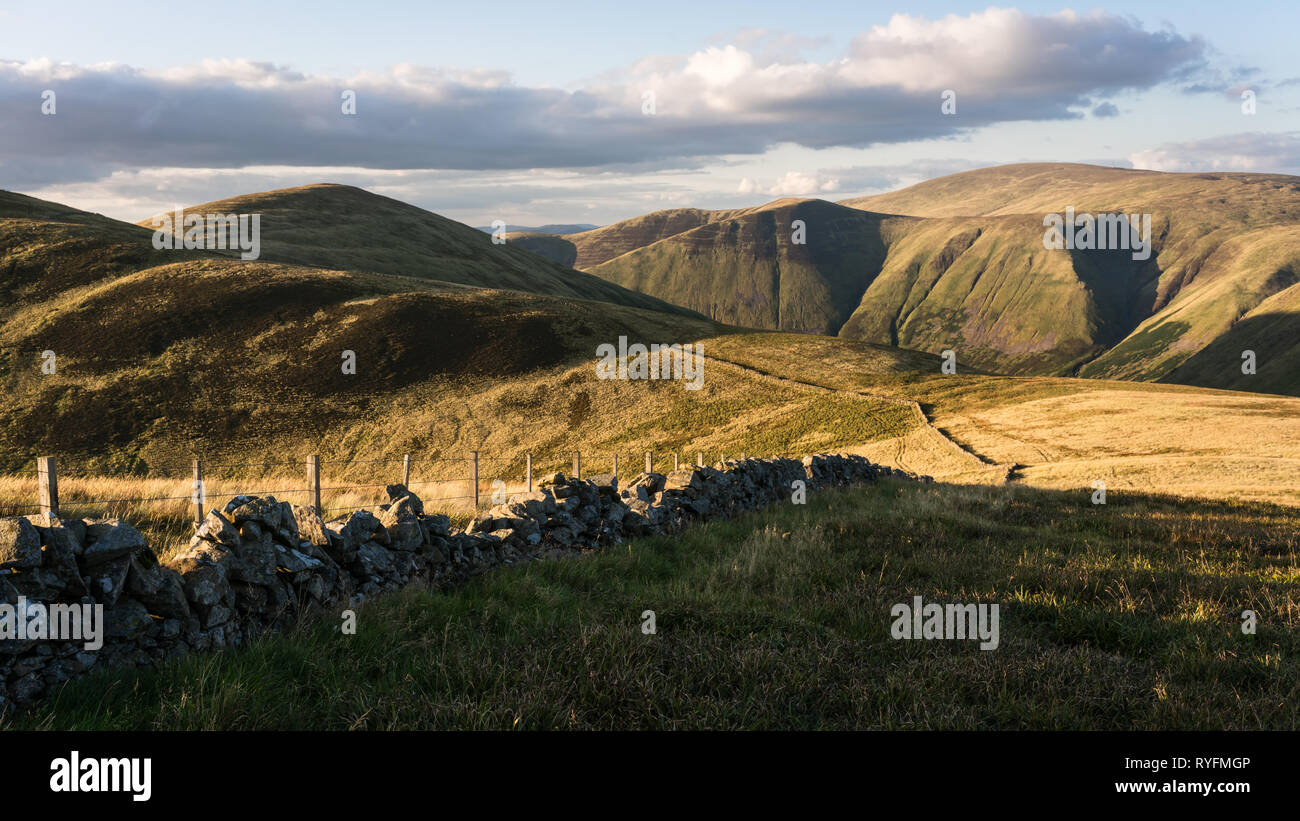 Looking north along the shepherds wall from Garelet Dod towards Garelet Hill in the Tweed Valley in the Scottish Borders in evening light.. - Stock Image