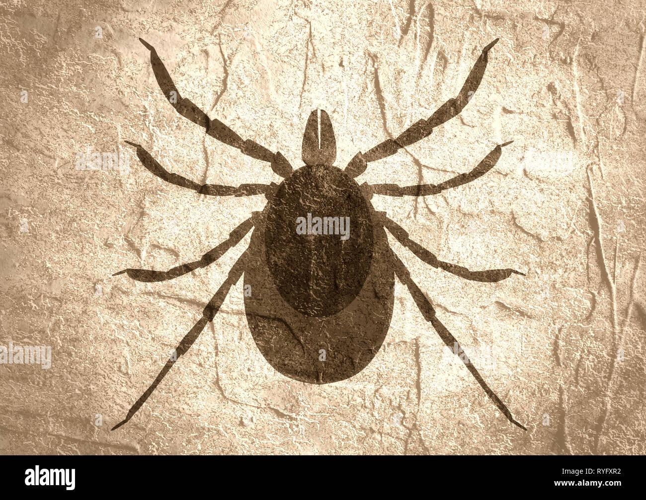 Silhouette of Tick parasite. Sketch of Mite Stock Photo