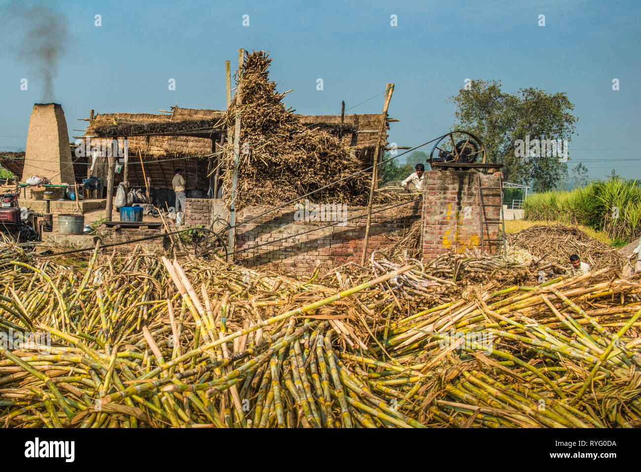 HIMACHAL PRADESH, INDIA.  traditional cane sugar plant in rural India - Stock Image