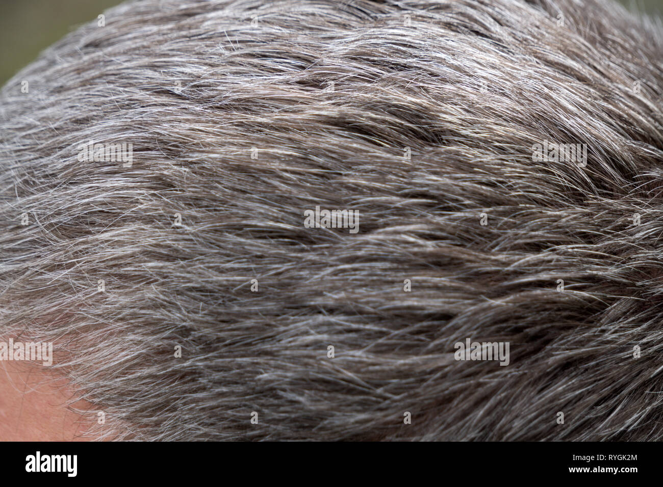 Senior man and hair loss issue casual smile - Stock Image