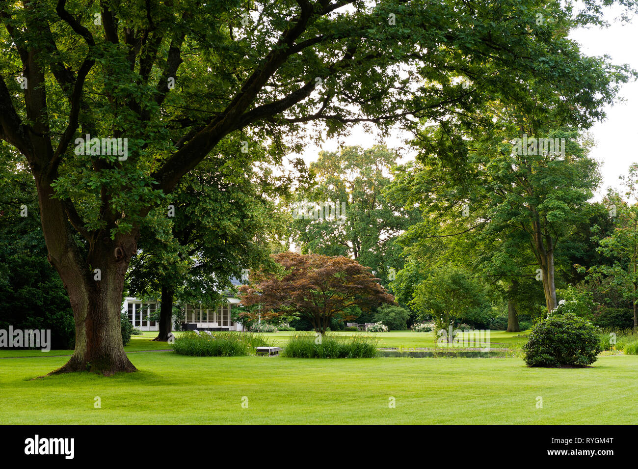 Lawn and trees - Stock Image