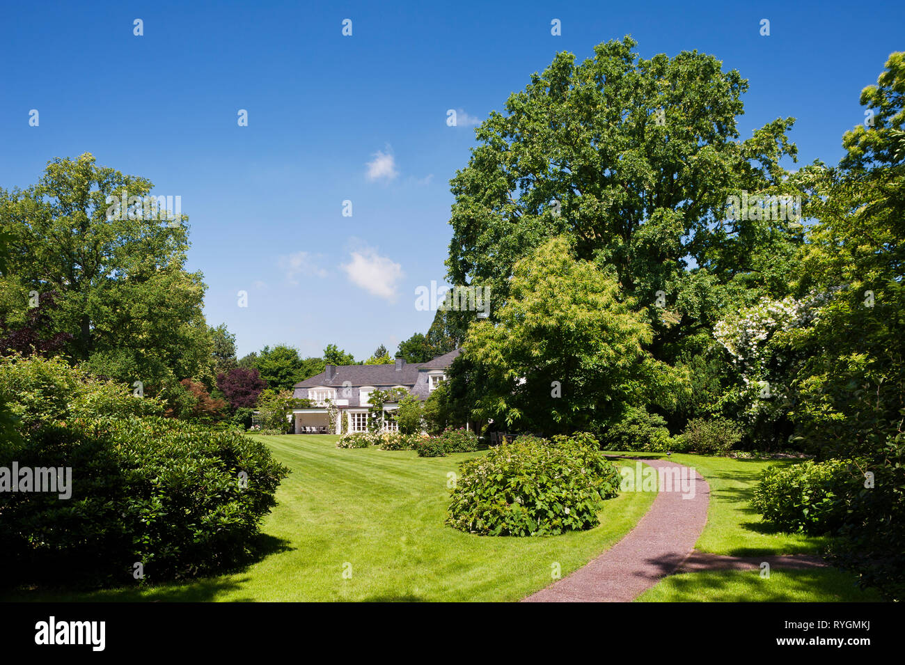 Lawn and trees by house - Stock Image