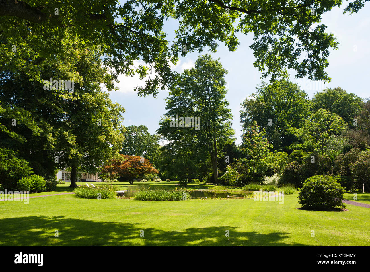 Lawn and trees around pond - Stock Image