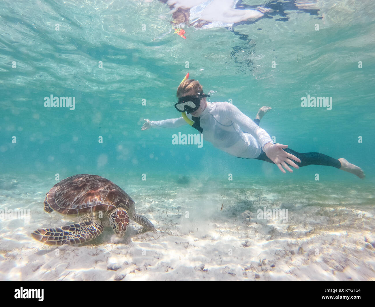 Woman on vacations wearing snokeling mask swimming with sea turtle in turquoise blue water of Gili islands, Indonesia. Underwater photo. Stock Photo
