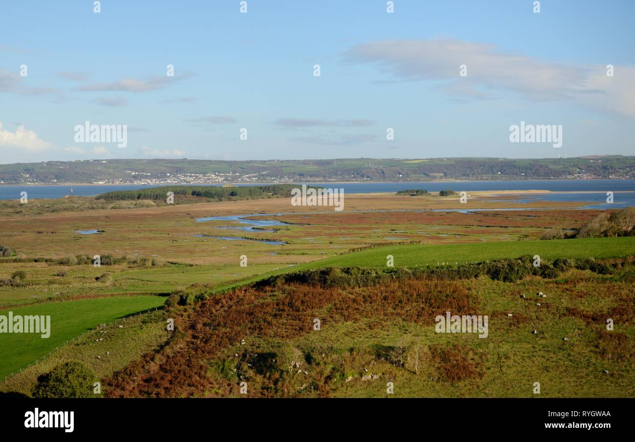 Overview of sheep pastures, Landimore Marsh, Whiteford Burrows and the Loughor Estuary, Llanmadoc, The Gower, Wales, UK, October. Stock Photo