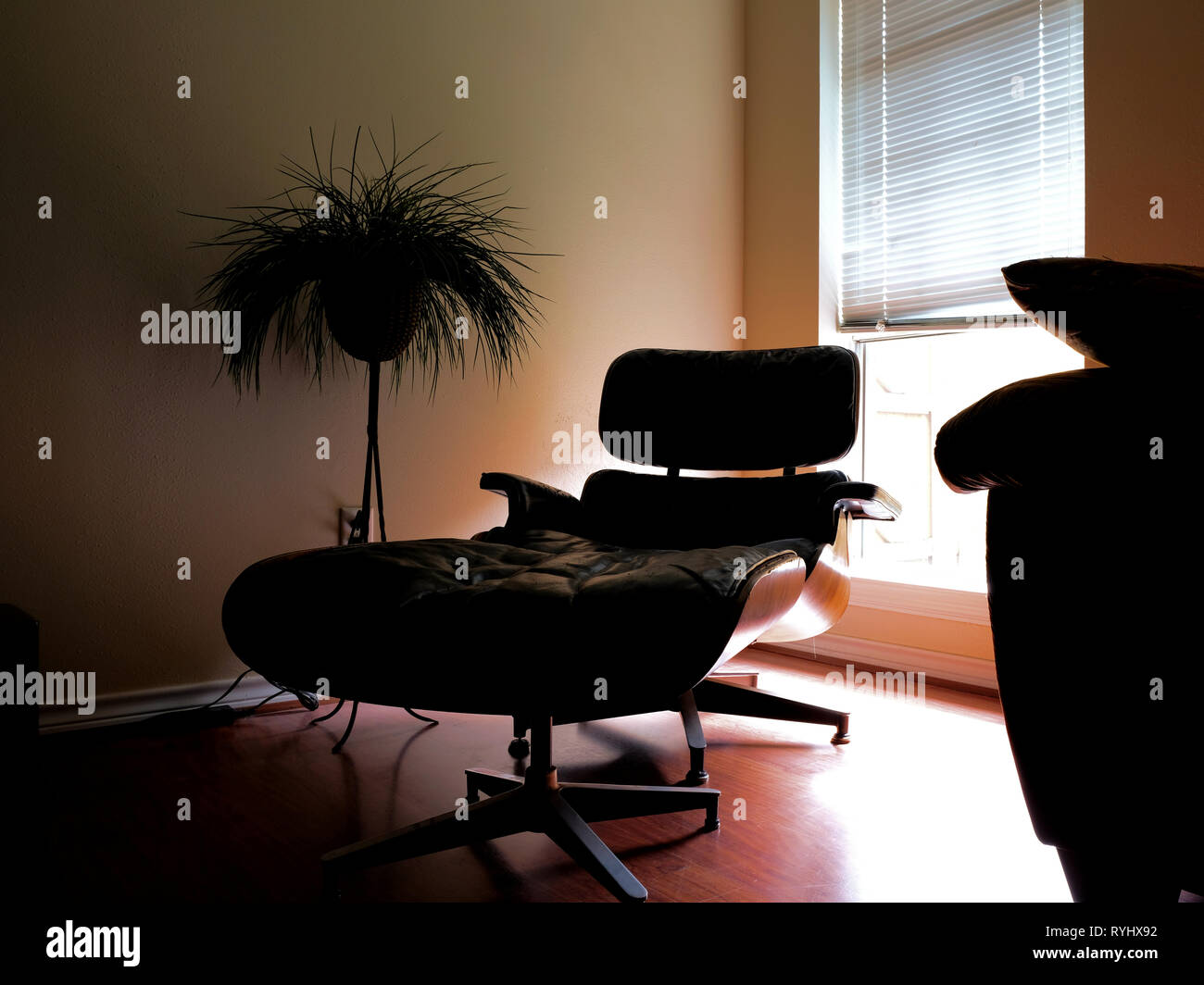 Charles and Ray Eames designer black lounge chair with ottoman in a living room setting by a window on a wooden floor; subdued tones and dark setting. - Stock Image
