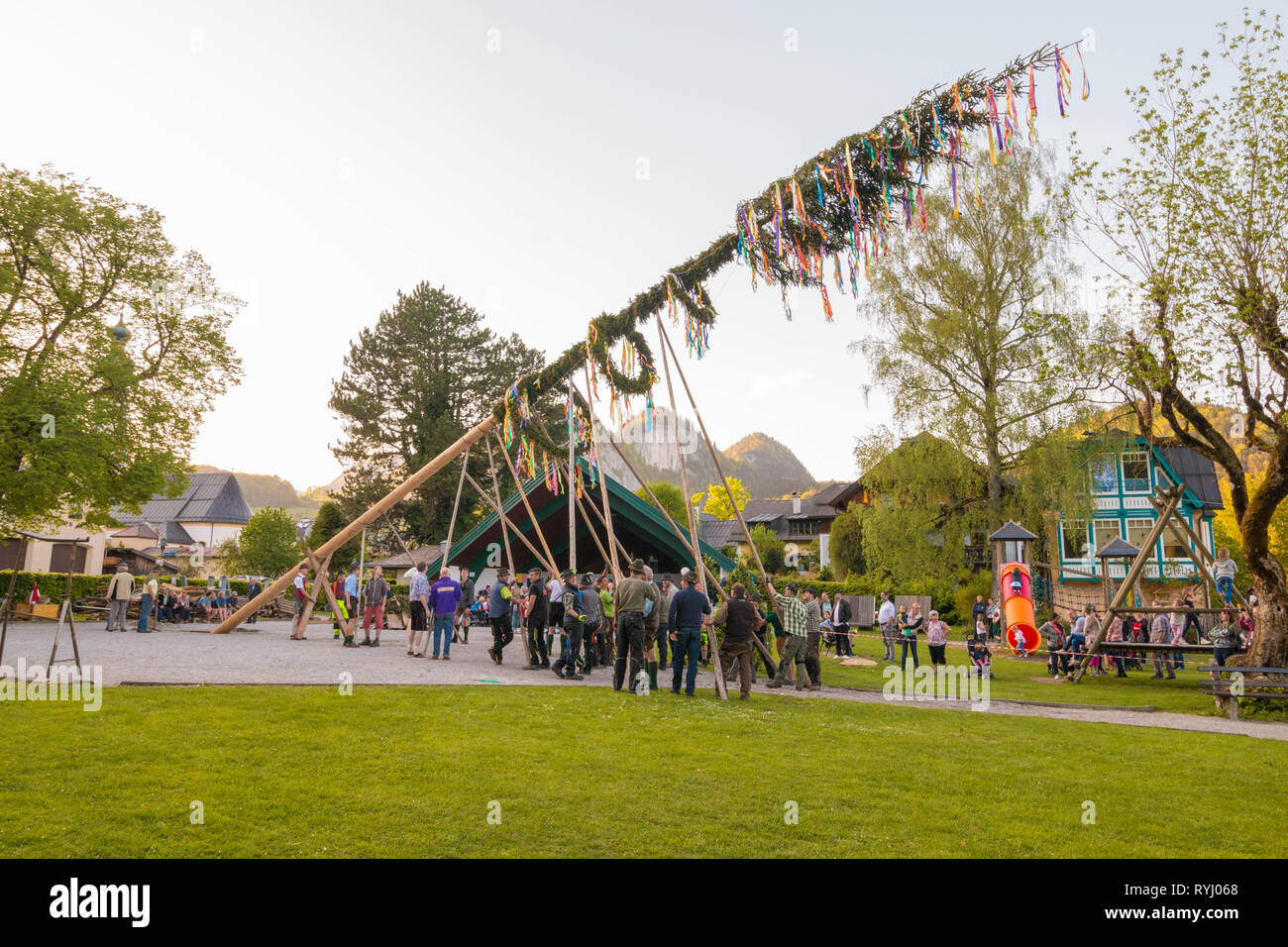 St.Gilgen, Austria - April 30, 2018: Traditional decorated maypole is being erected during folk festival in austrian  alpine village. - Stock Image
