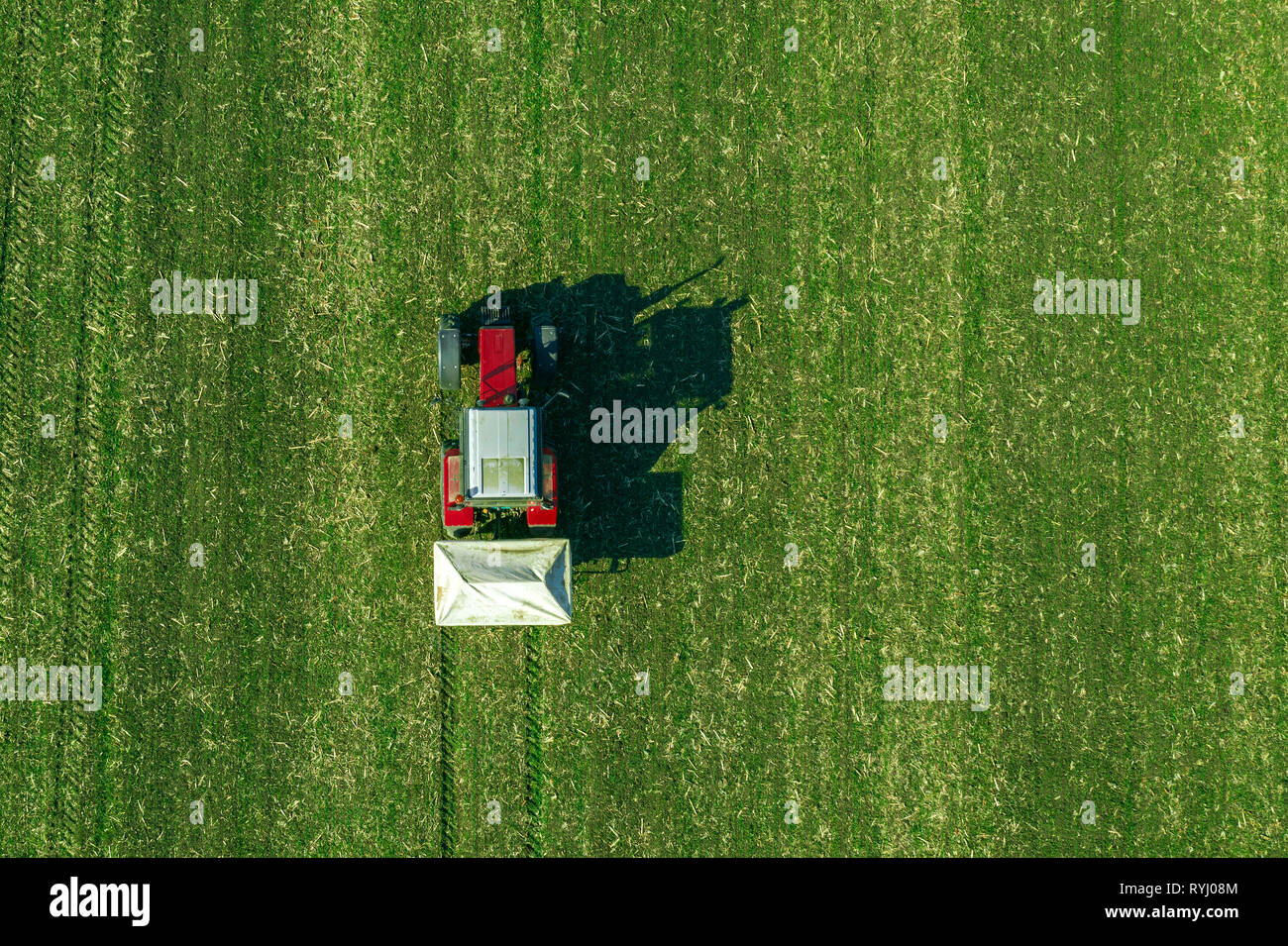 Agricultural tractor is fertilizing wheat crop field with NPK fertilizers, aerial view from drone pov - Stock Image
