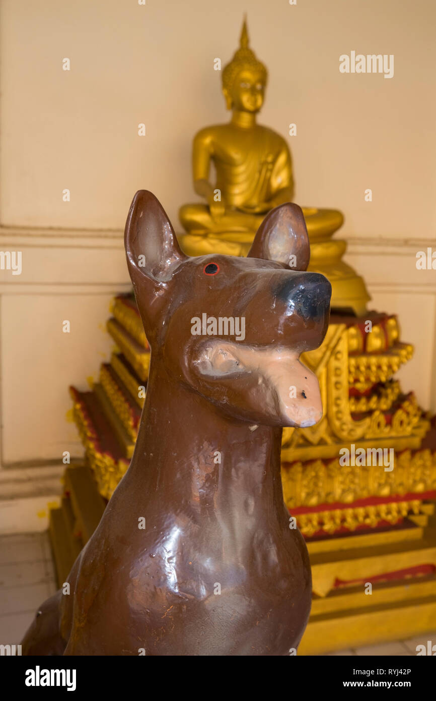 A dog, one of the devotional prayer animals at Wat Klang in
