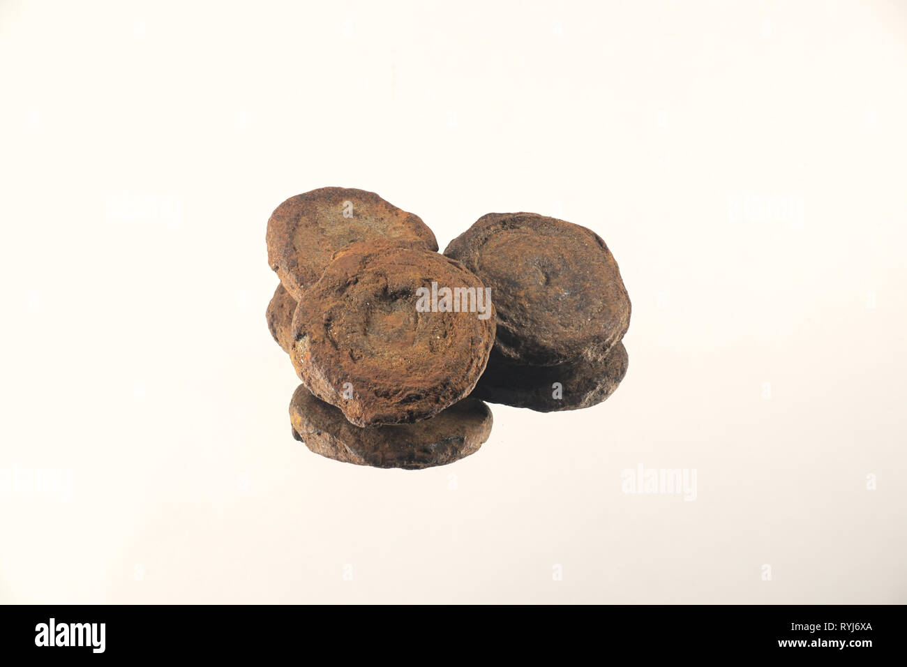 Bog iron is a form of impure iron deposit that develops in bogs or swamps.  The dominant source of iron ore in Scandinavia and Russia into the Middle  - Stock Image