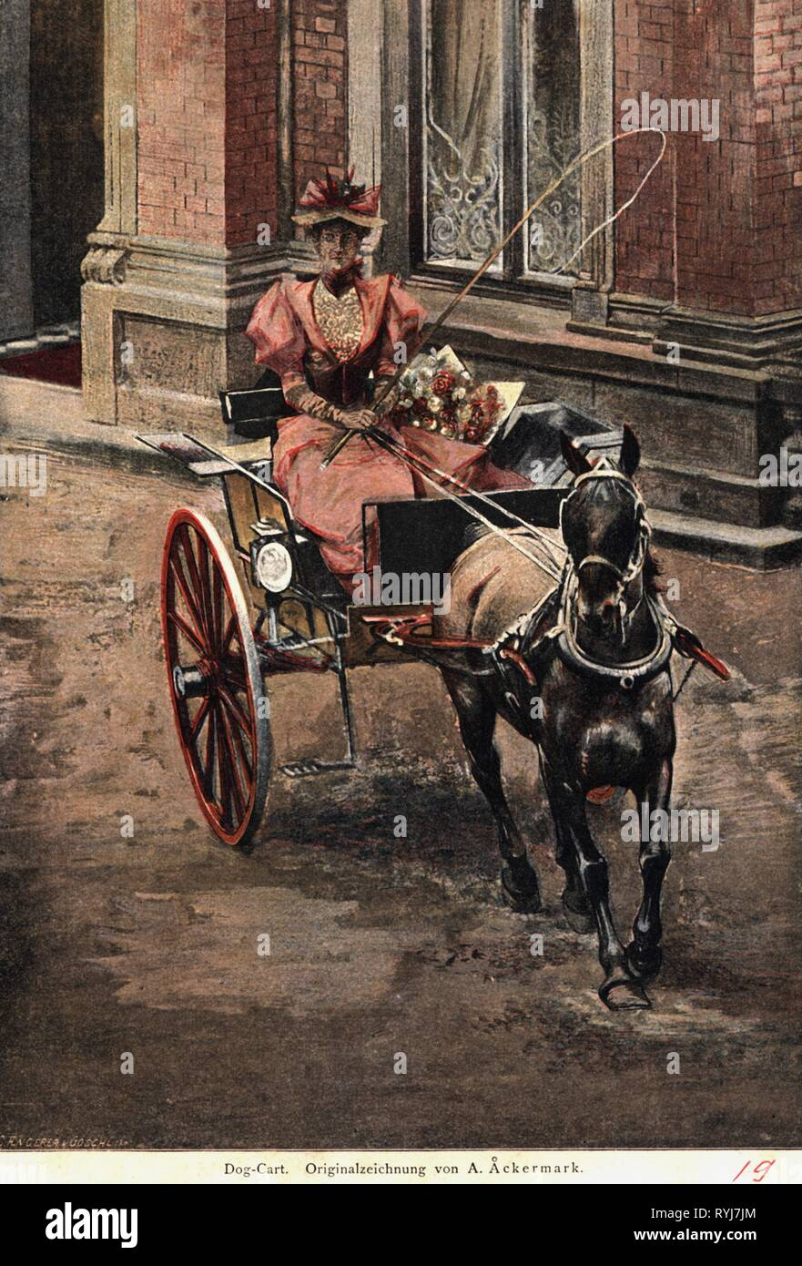 transport / transportation, coach, lady in a dogcart, print after A. Aeckermann, circa 1895, Additional-Rights-Clearance-Info-Not-Available - Stock Image