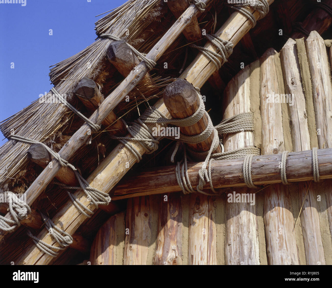 prehistory, architecture, neolithic, reconstruction of a house (5500 BC), detail, gable, oldest houses in Central Europe, Straubing, Lower Bavaria, Additional-Rights-Clearance-Info-Not-Available - Stock Image
