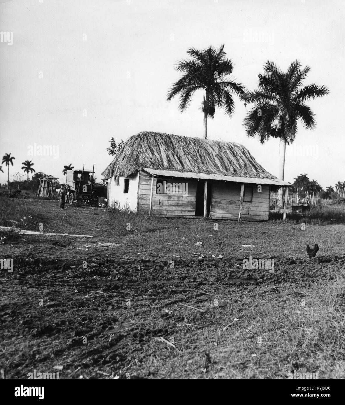 geography / travel, Cuba, architecture, peasant house, exterior view, circa 1950, Additional-Rights-Clearance-Info-Not-Available - Stock Image