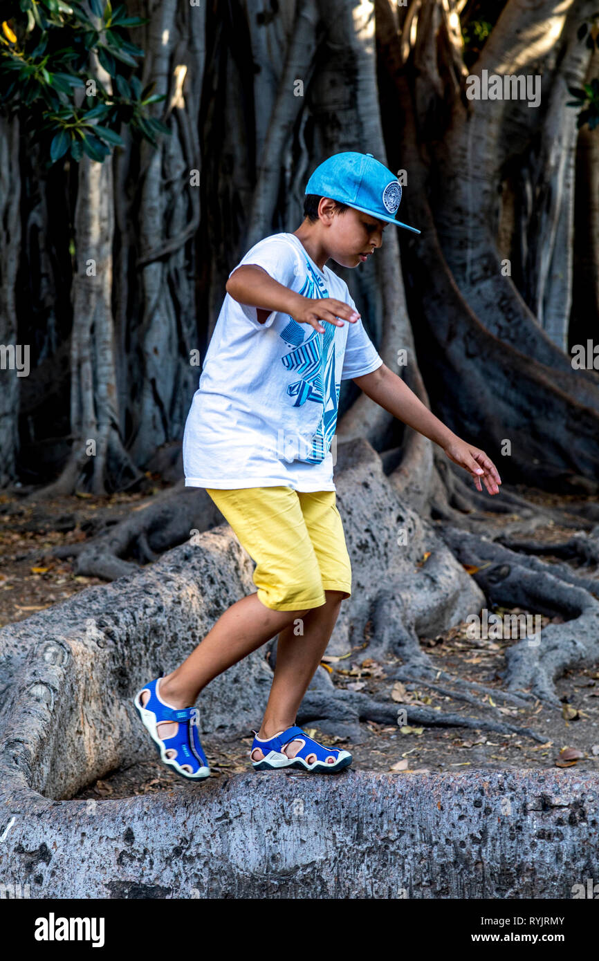 12-year-old boy  walking on a tree root in a park in Palermo, Sicily (Italy). - Stock Image