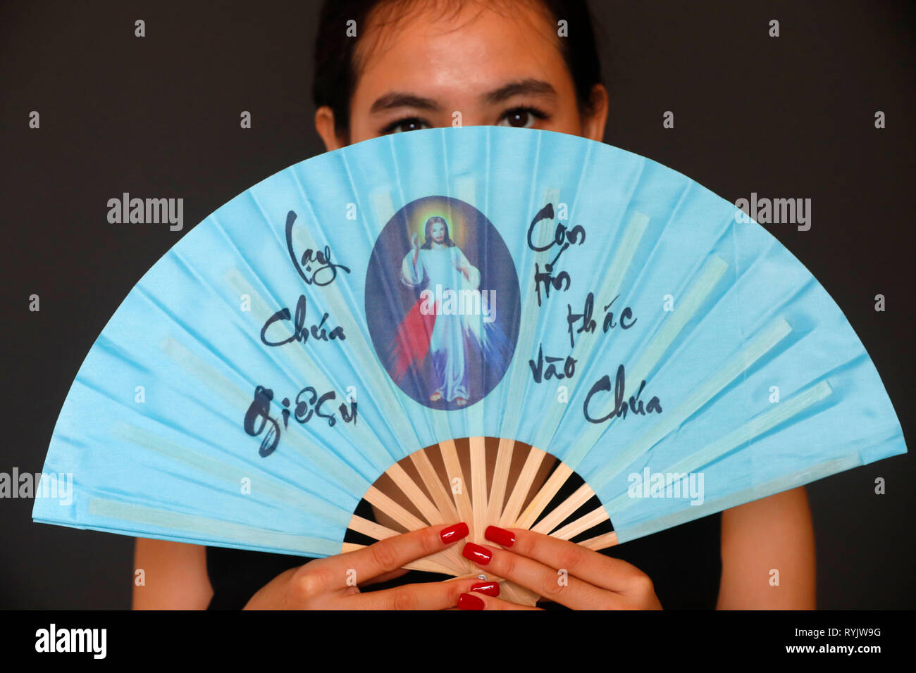 Range of Jesus the Divine Mercy, I trust in you. Vietnam. - Stock Image