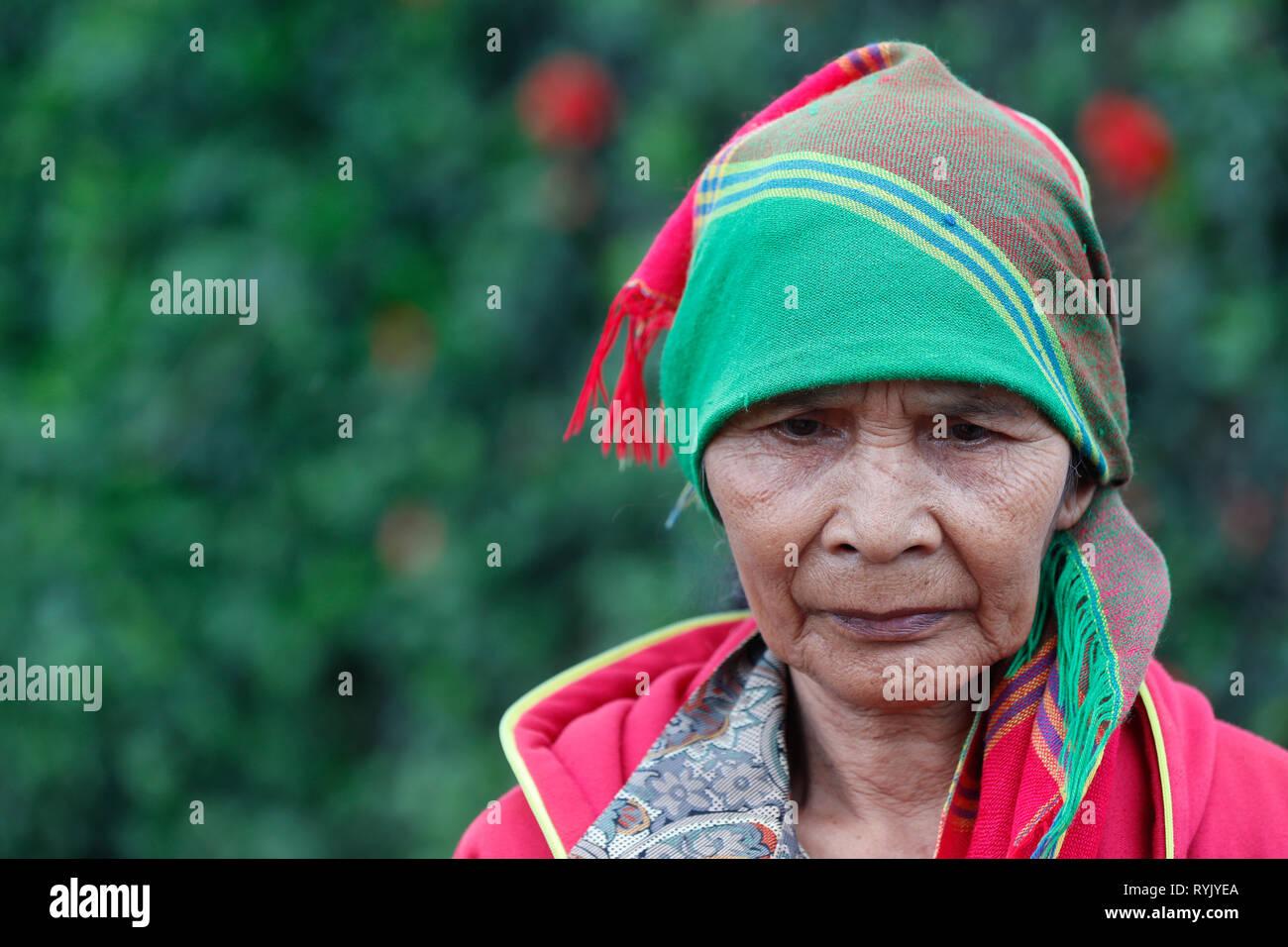 Senior ethnic minority woman. Portrait.  Dalat. Vietnam. - Stock Image