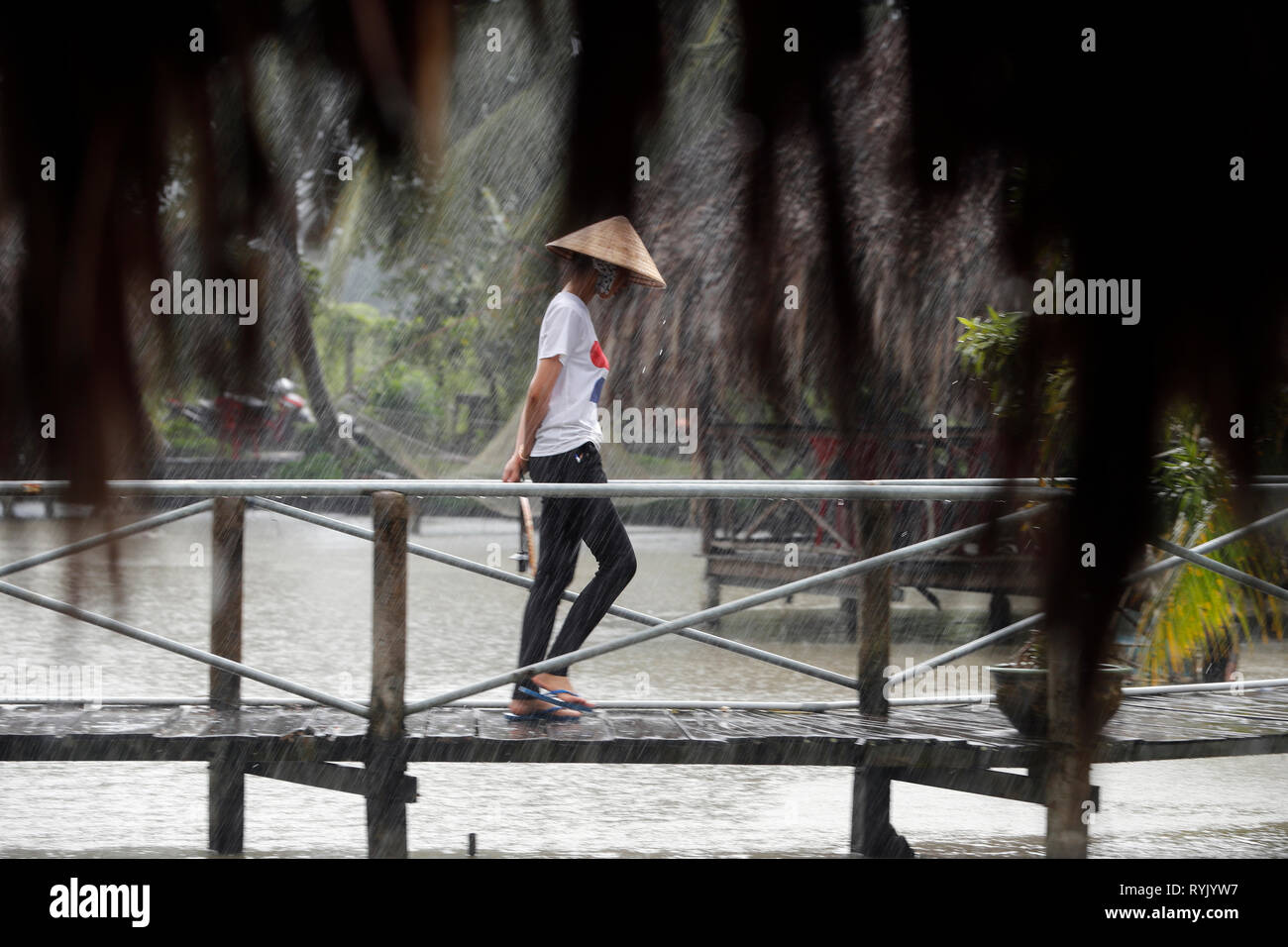 Rainy season.  Vietnamese woman with conical hat under heavy rain.  Can Tho. Vietnam. - Stock Image