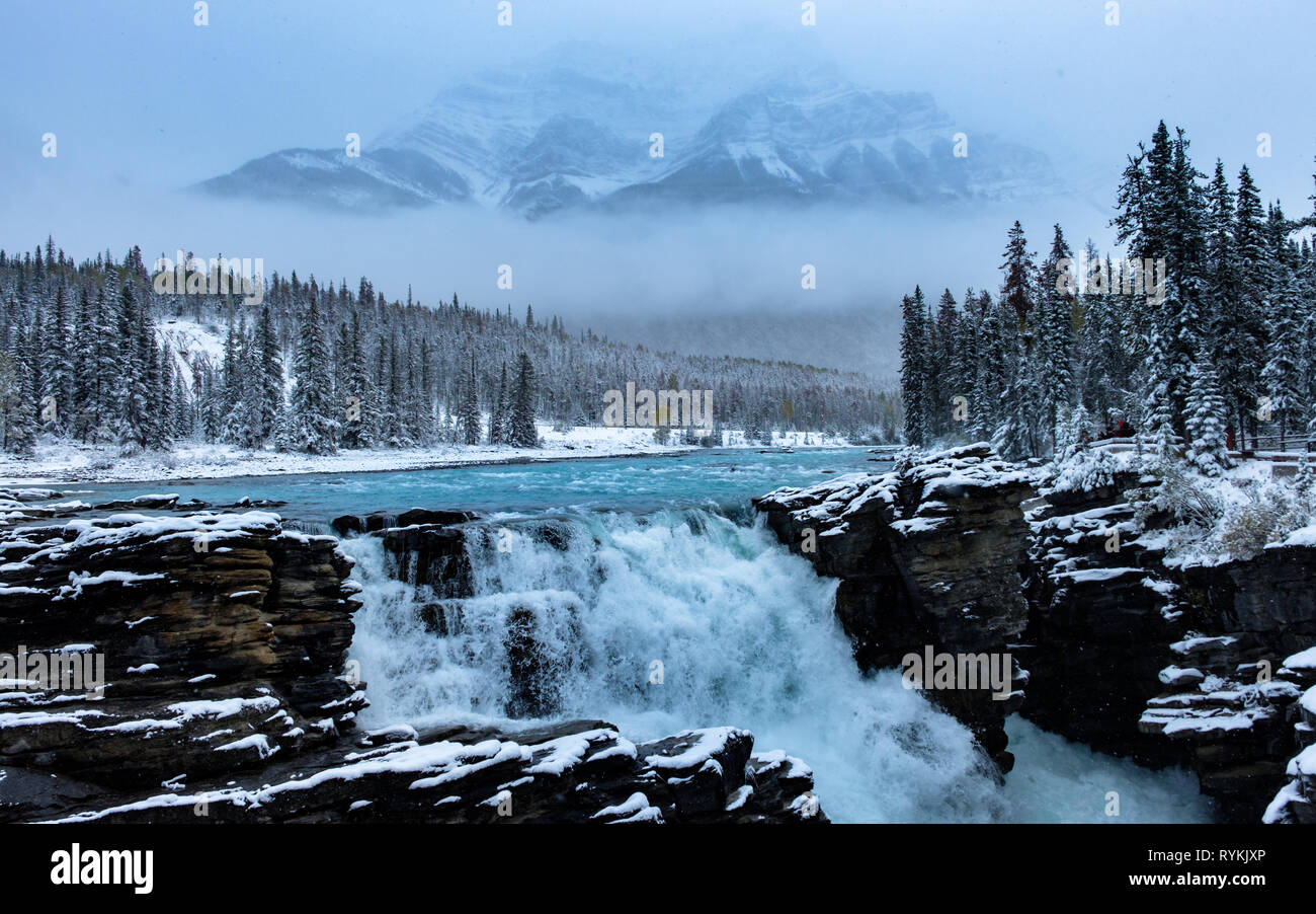 A fantastic image of waterfall, mountains, trees & fog while snowing, Athabasca Falls, Jasper, Canada. Stock Photo