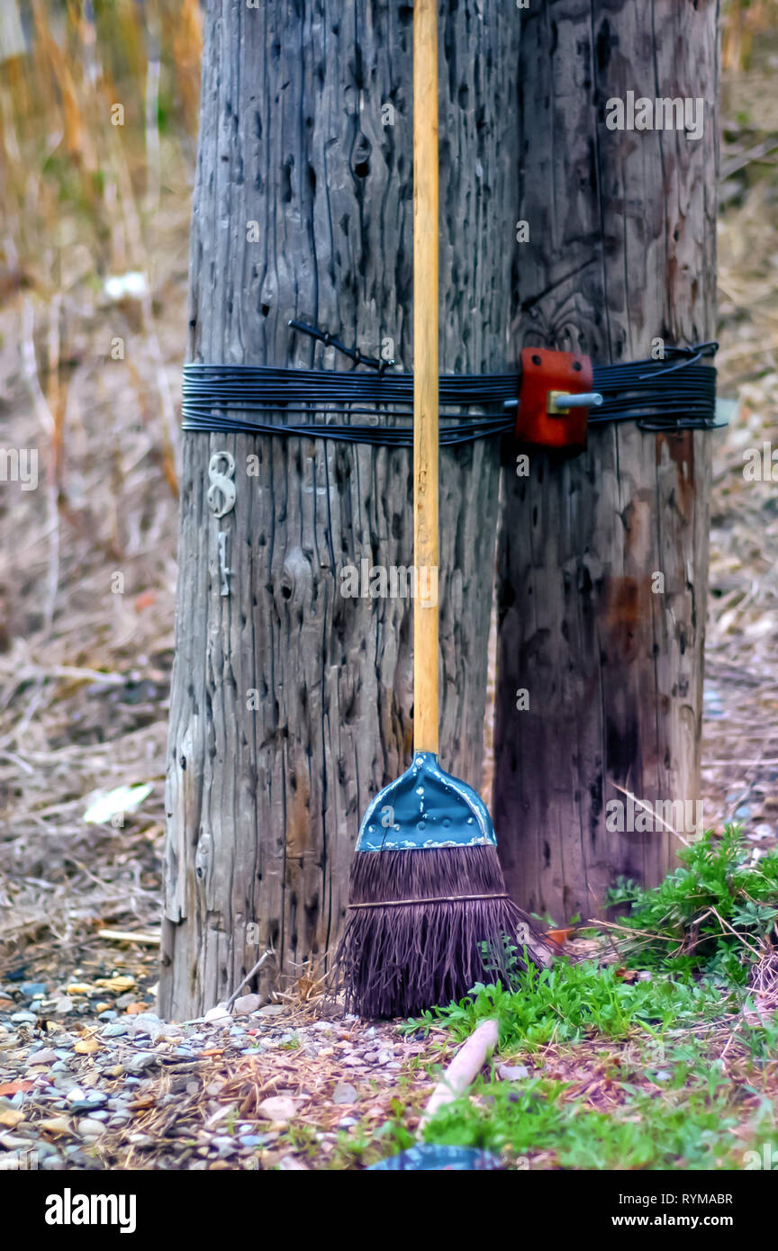 A broom with metallic bristles leaning against tree stumps that are tied together with plastic wires fastened using a rusting nut and bolt. - Stock Image