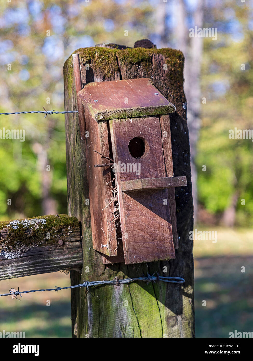 A wooden birdhouse on a mossy fence post. - Stock Image