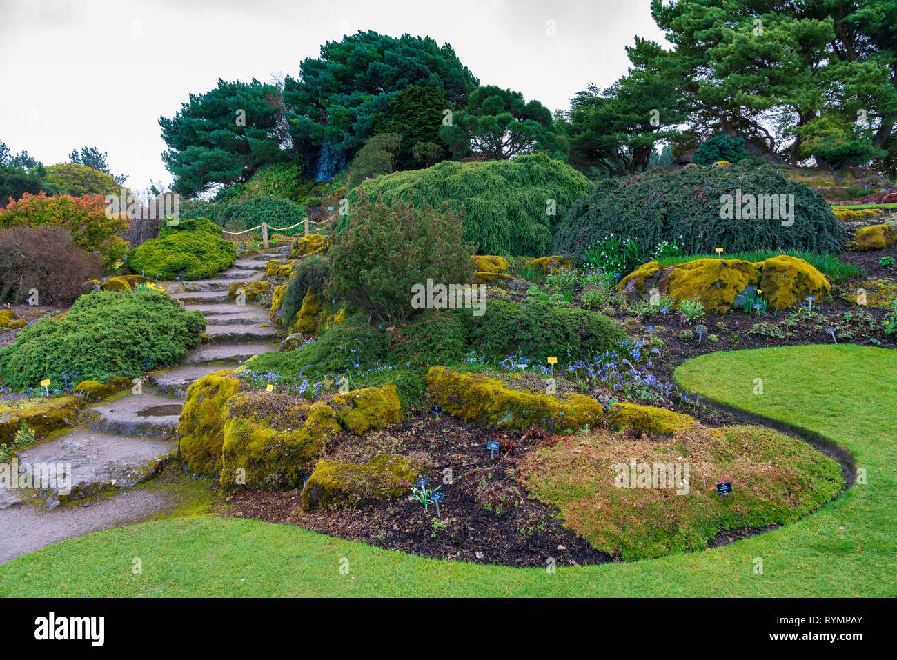 The Rock Garden a in Royal Botanic Garden Edinburgh, Scotland ,UK - Stock Image