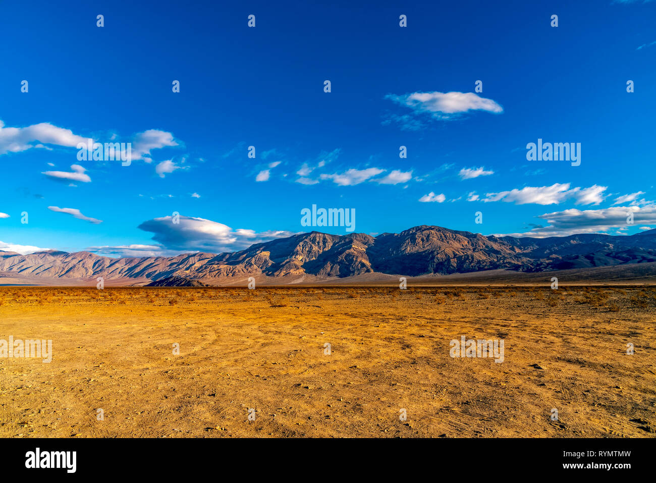 Early morning in the Mojave Desert, barren valley and mountains.  Yellow fields. - Stock Image