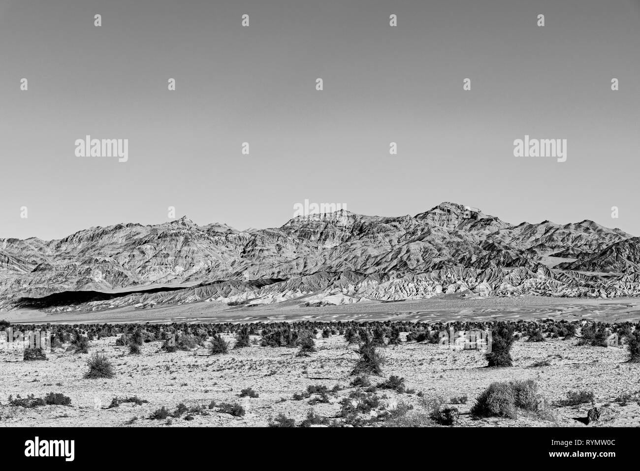 Black and white, Bushes growing in sandy desert valley with rocky barren mountains beyond. - Stock Image