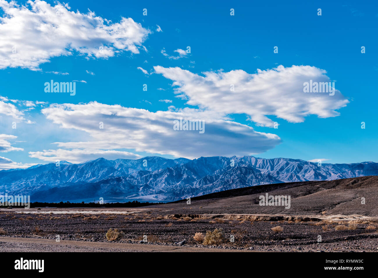 Barren desert landscape with sparse vegetation and blue mountains beyond under bright blue skies with white fluffy clouds. - Stock Image