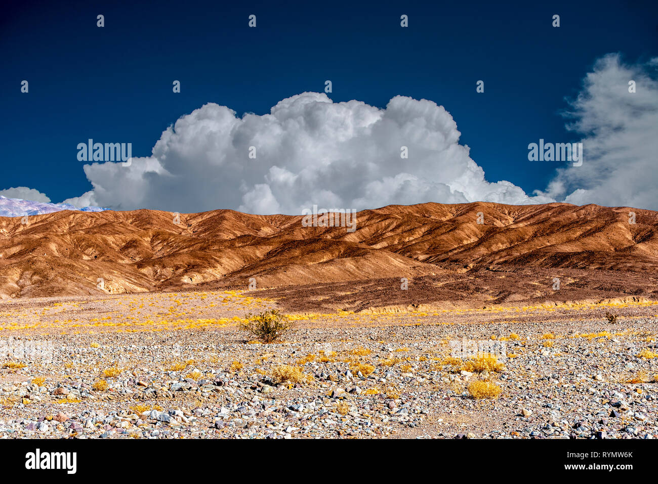 Rocky fields with yellow vegetation and barren brown mountains under bright blue sky with white fluffy clouds. - Stock Image