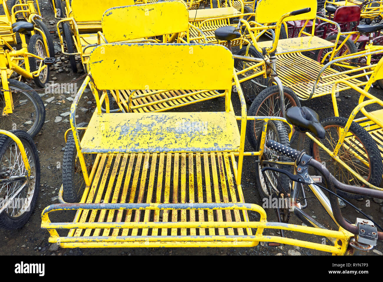 Close Up Horizontal View Of A Group Of Yellow Old Rusty Bicycles