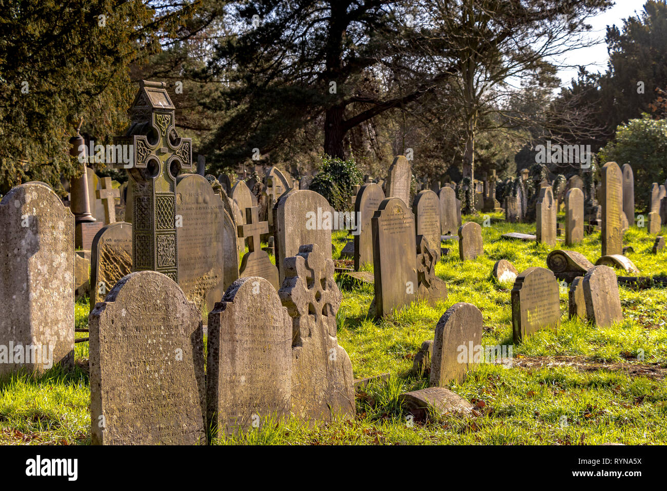 Graves and headstones in Brompton Cemetery in the Royal Borough of Kensington and Chelsea, SW London, managed by The Royal Parks. Stock Photo