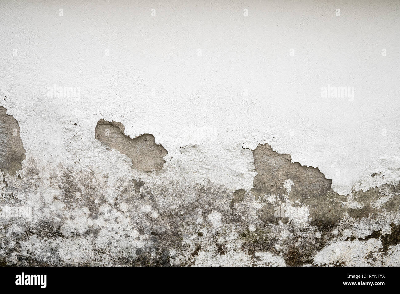 Concrete Painted Wall damaged by humidity - Stock Image