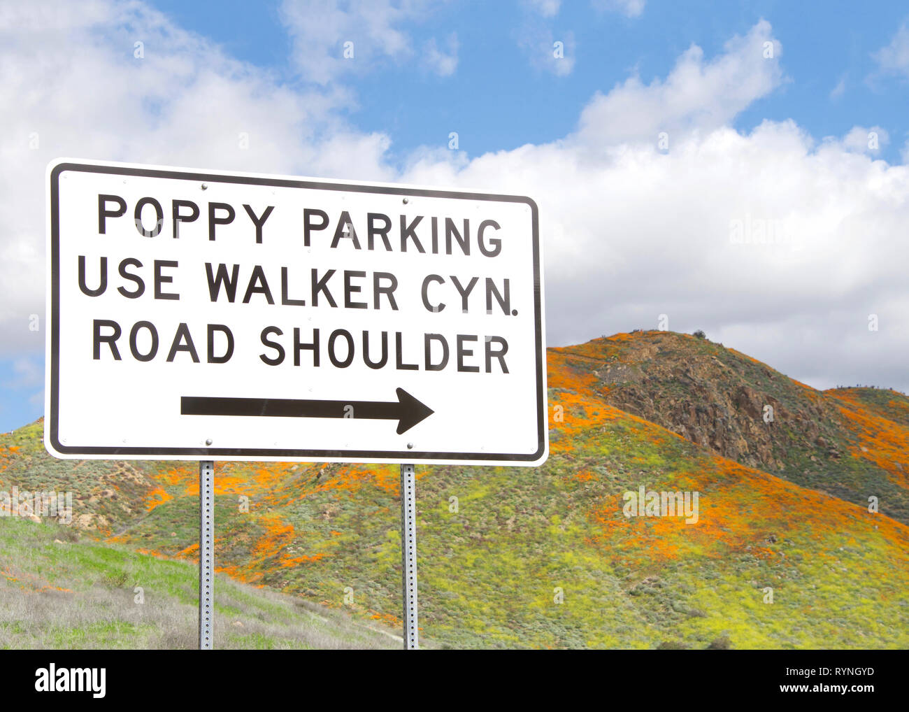 View of sign for poppy fields in the hills along Walker Canyon in Lake Elsinore, Southern California exploding in orange poppy flowers, cloudy skies a Stock Photo