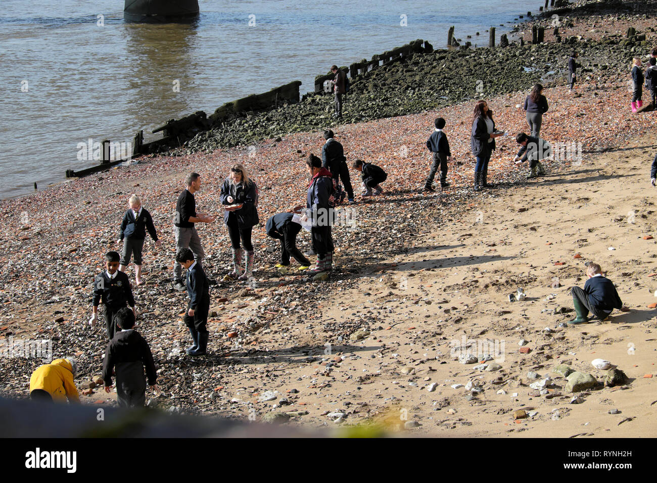 A view of schoolchildren school group mudlarking on the north sandy beach side of the River Thames in winter sunshine London England UK  KATHY DEWITT Stock Photo