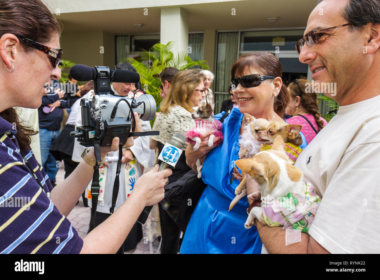 Miami Florida Temple Israel Bow-Wow Palooza Interfaith Blessing of the Animals community event owner pet dog animal Chihuahua wo - Stock Image