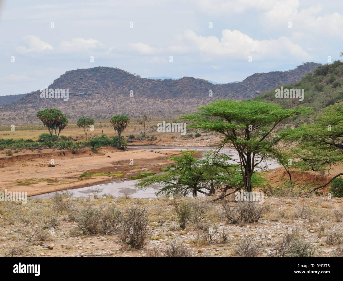 Ewaso Nyiro River Stock Photos & Ewaso Nyiro River Stock