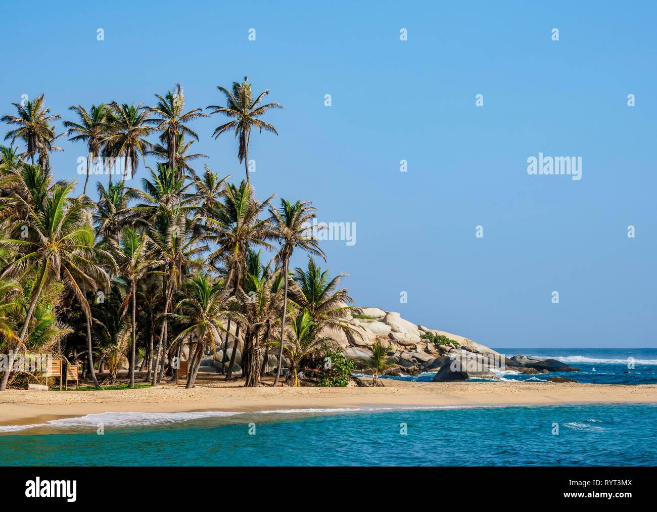 Palm beach, El Cabo San Juan del Guia, Tayrona National Natural Park, Magdalena Department, Caribbean, Colombia - Stock Image