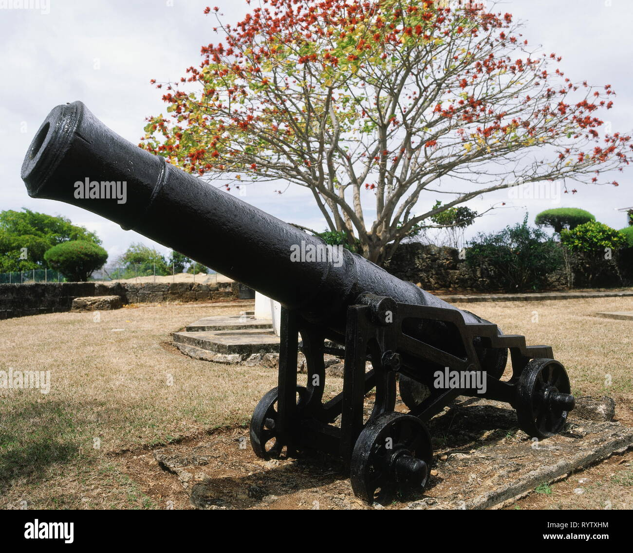weapons, cannon on the Courland Point, Fort James from 1768, Tobago, Caribbean Isle, Additional-Rights-Clearance-Info-Not-Available - Stock Image