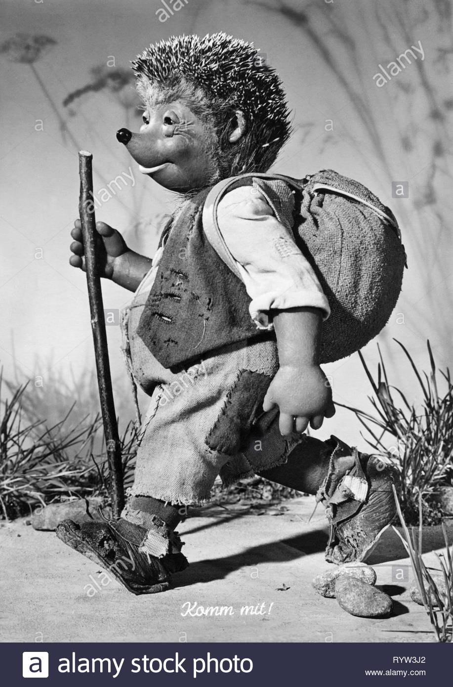 games / toys, puppets, 'Mecki' - The hedgehog, from the movies of the Diehl brothers, 1950s, Additional-Rights-Clearance-Info-Not-Available - Stock Image