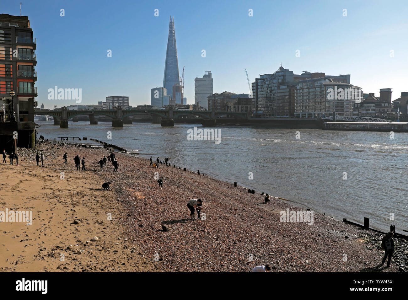 View of River Thames at low tide, Shard building, people mudlarking near Queenhithe and Southwark Bridge in London EC4 England UK  KATHY DEWITT - Stock Image