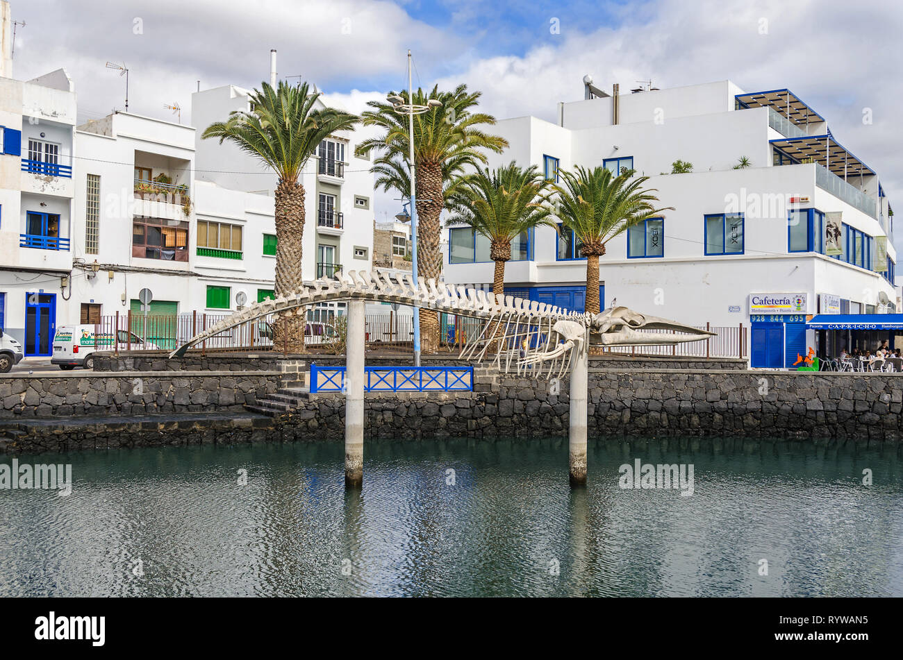 Arrecife, Spain -  November 5, 2018: The whale skeleton (Bryde's whale) common in Lanzarote waters displayed to generate environmental awareness areas - Stock Image