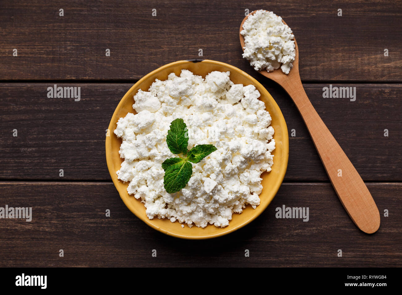Farm cottage cheese concept - Stock Image