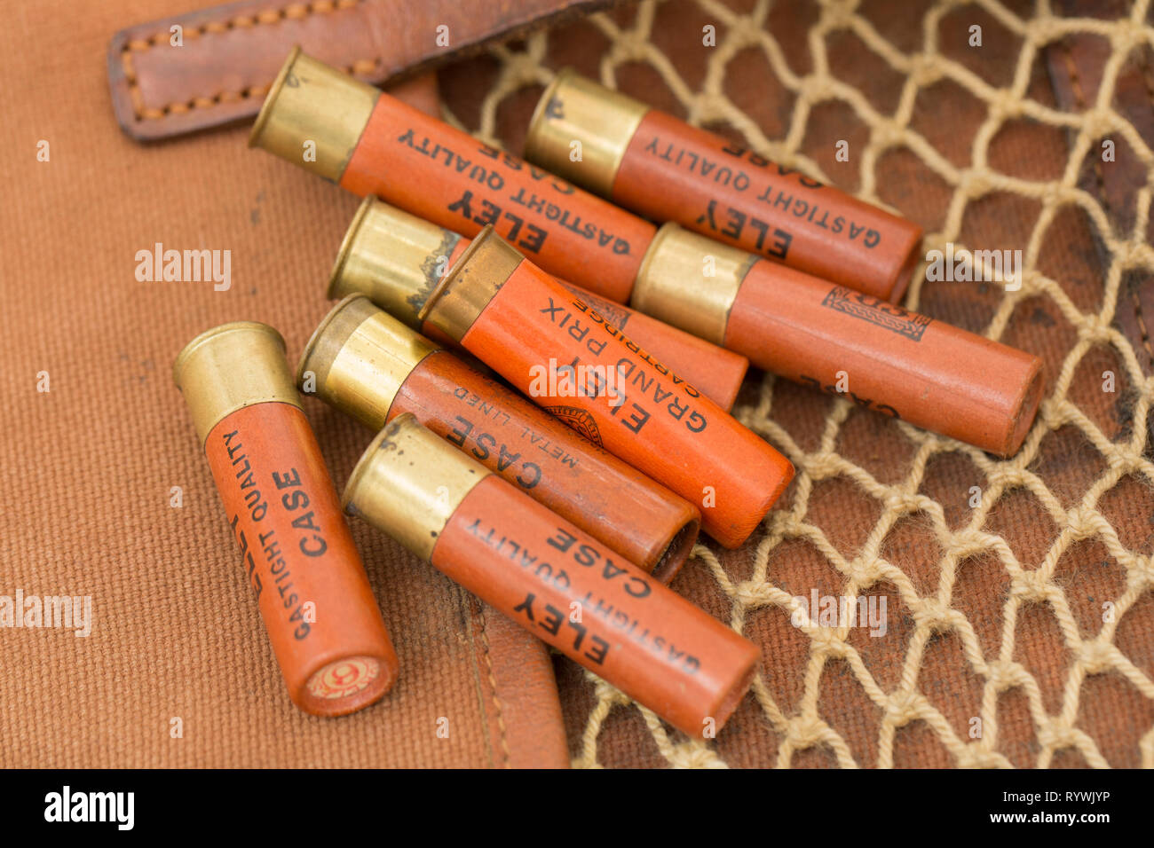 Old Eley paper cased 28-bore shotgun cartridges with rolled turnover closures loaded with leadshot. Collecting shotgun cartridges is a hobby that can  - Stock Image