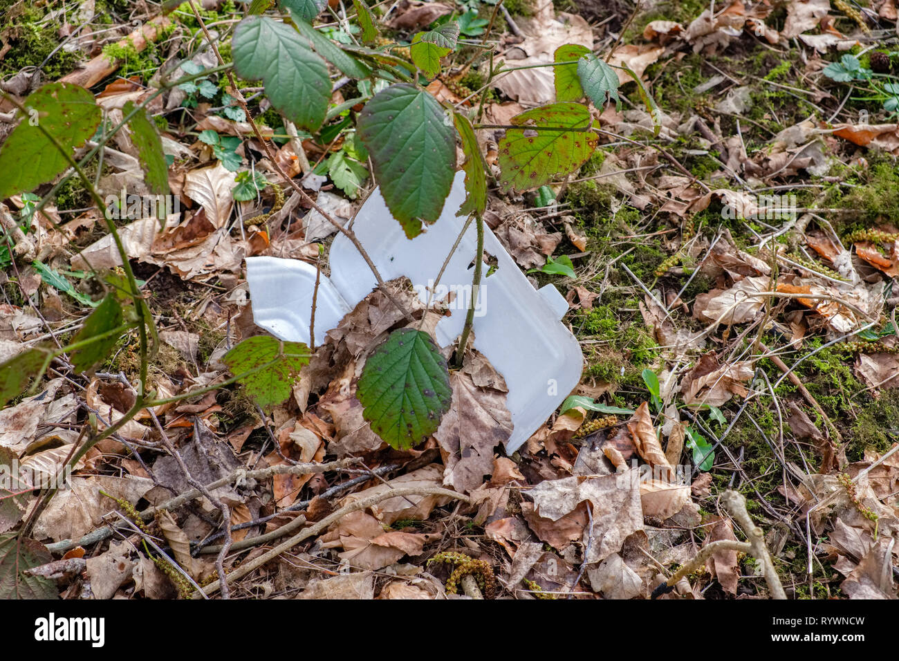 Environmental image of Waste with a Plastic non-biodegradable foot container lying amongst leaves on the forrest floor. - Stock Image