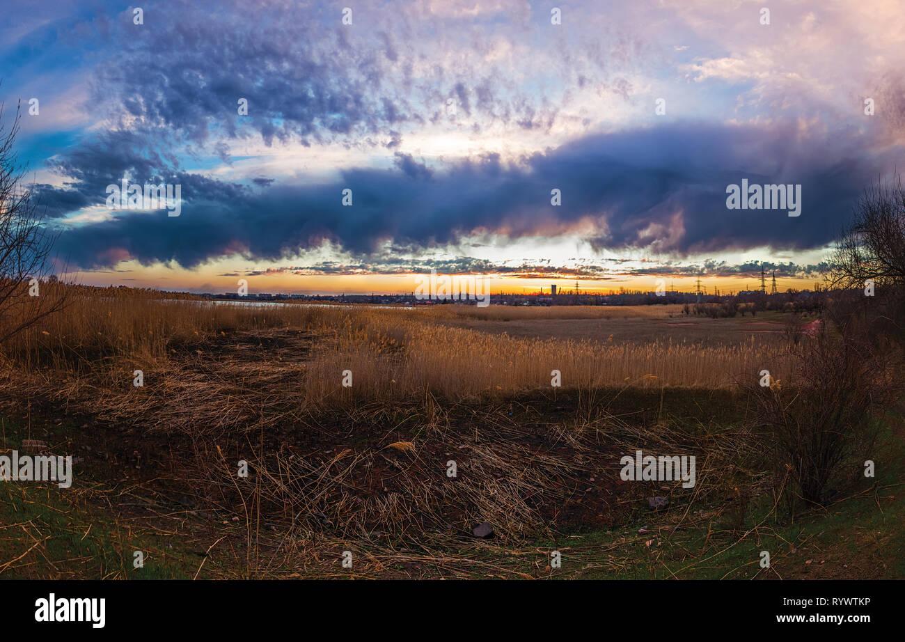 Bright contrast cloudy sunset landscape over the cane field vegetation in Krivoy Rog, Dnipropetrovsk region, Ukraine - Stock Image