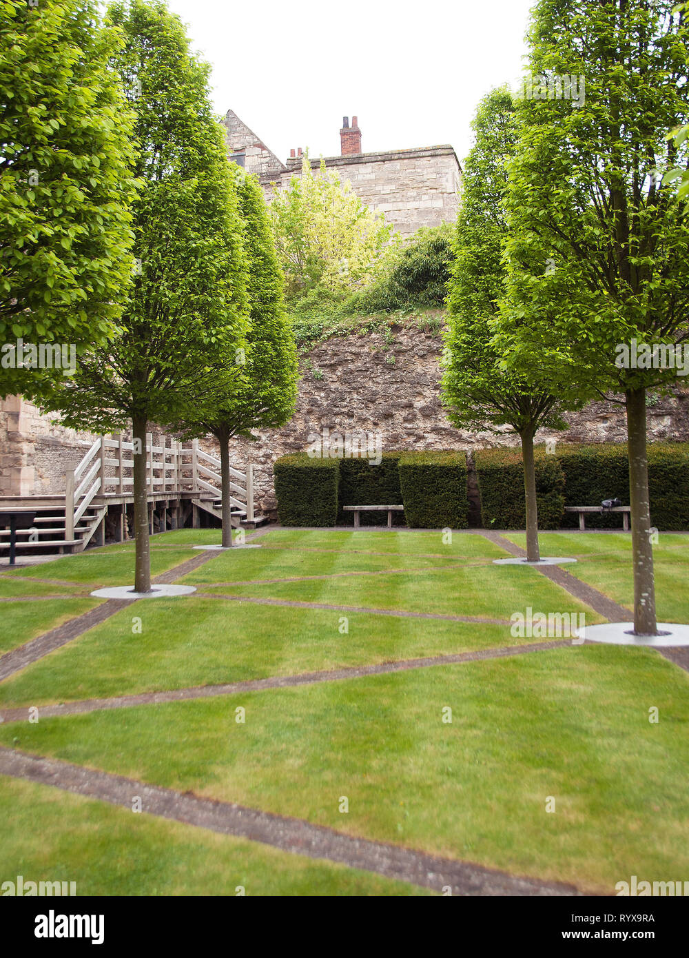 Medieval Bishop's_Palace Contemporary Garden owned by English Heritage is in a histroric setting overlooking Lincoln City with fastigiate hornbeams - Stock Image
