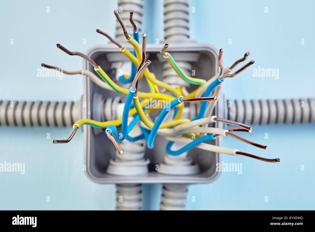 diagram of copper wiring of junction box, exposed wire ends, close up